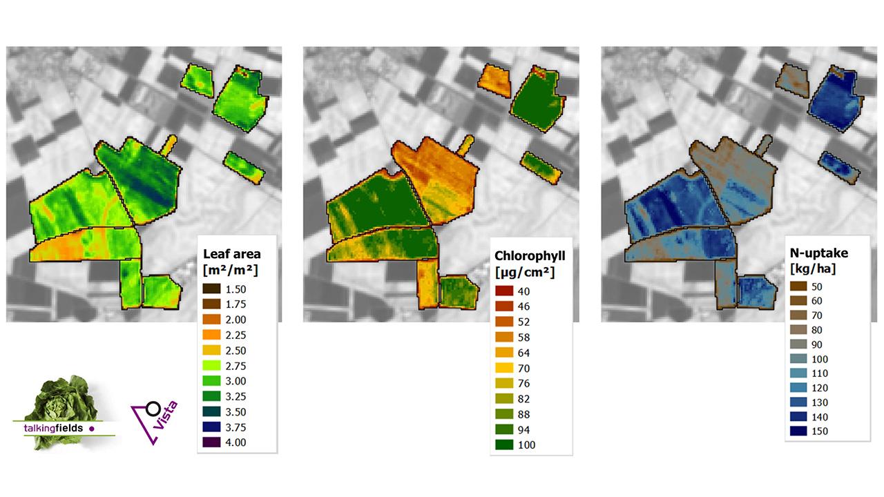 Auf drei Karten ist die Blätterdichte, Chlorophyllgehalt und Stickstoffaufnahme der Pflanzen auf einem Feld angegeben.